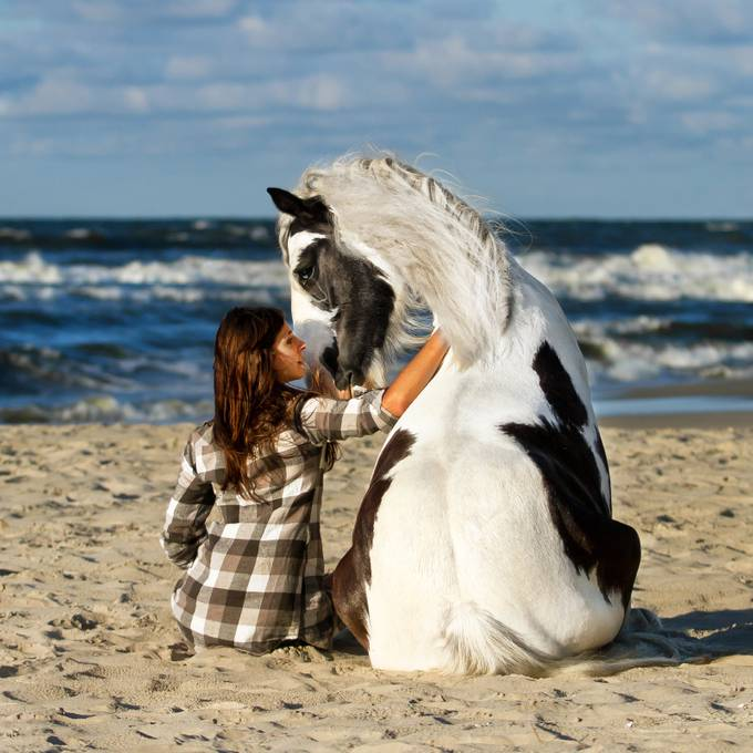 Summer memory by katarzynaokrzesik - I Heart Animals Photo Contest