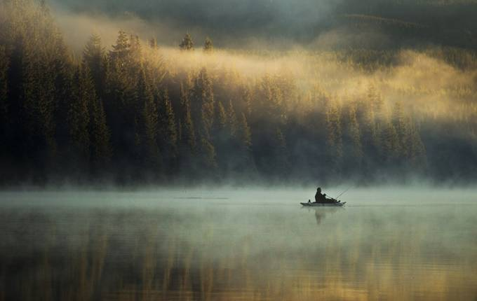 Morning Call by bunlee - Mist And Drizzle Photo Contest