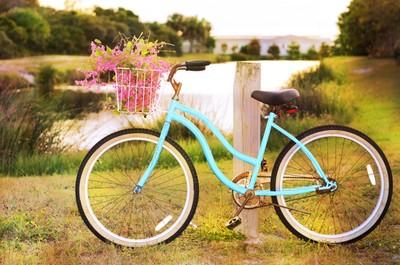 BikeVine