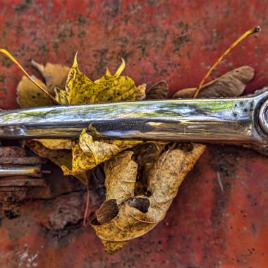 Rusting car, dying leaves