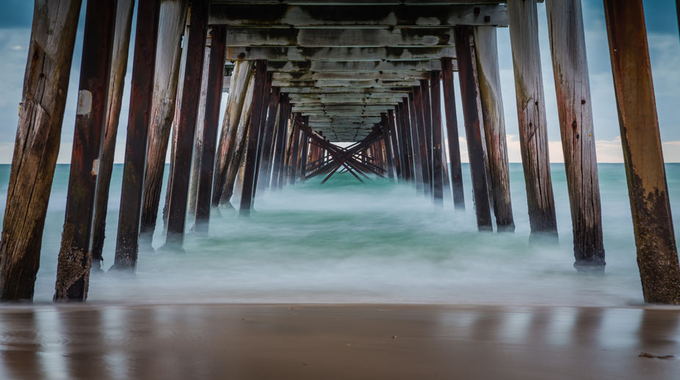 Green eyed Monster by Rhino300 - The View Under The Pier Photo Contest