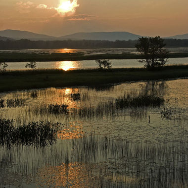 The sun setting over a calm marsh.