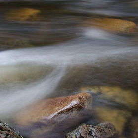 A fast section of water in a small rocky stream.