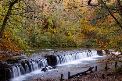 Plymbridge Weir