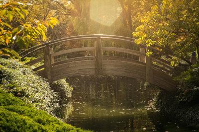 Flaring Bridge