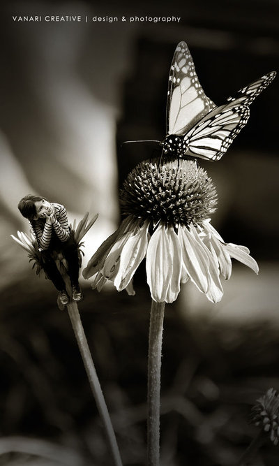 Hey there butterfly!