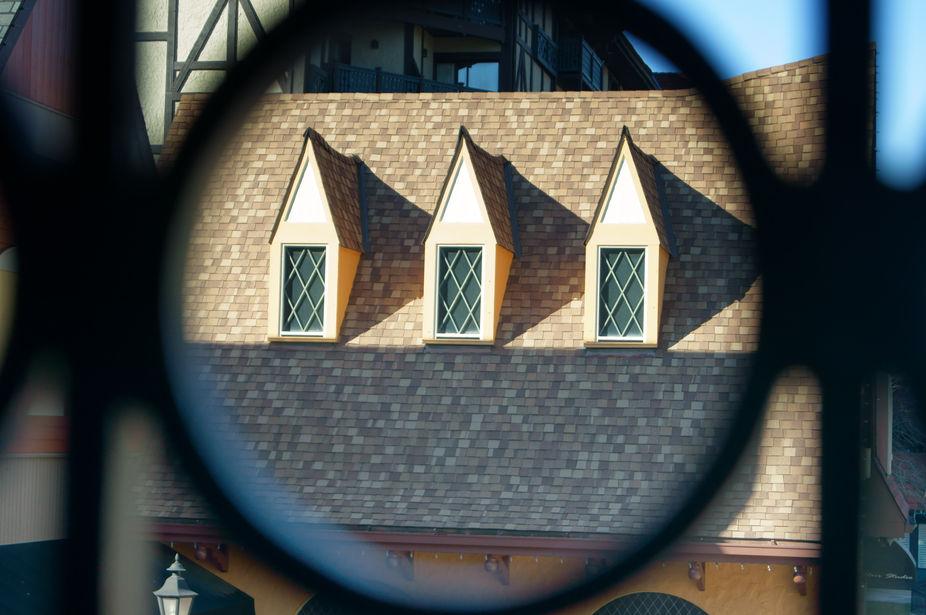 Spyin\' On Rooftop