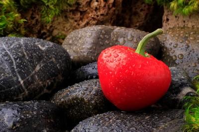 Chilli Pepper on the Rocks