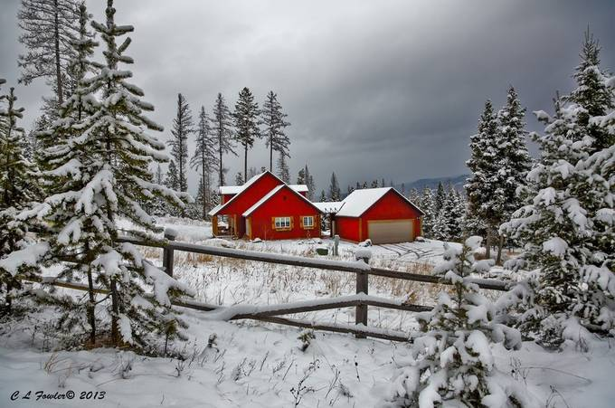 In the Red of Winter by clfowler - Fences Photo Contest