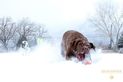 Snow Ballin!