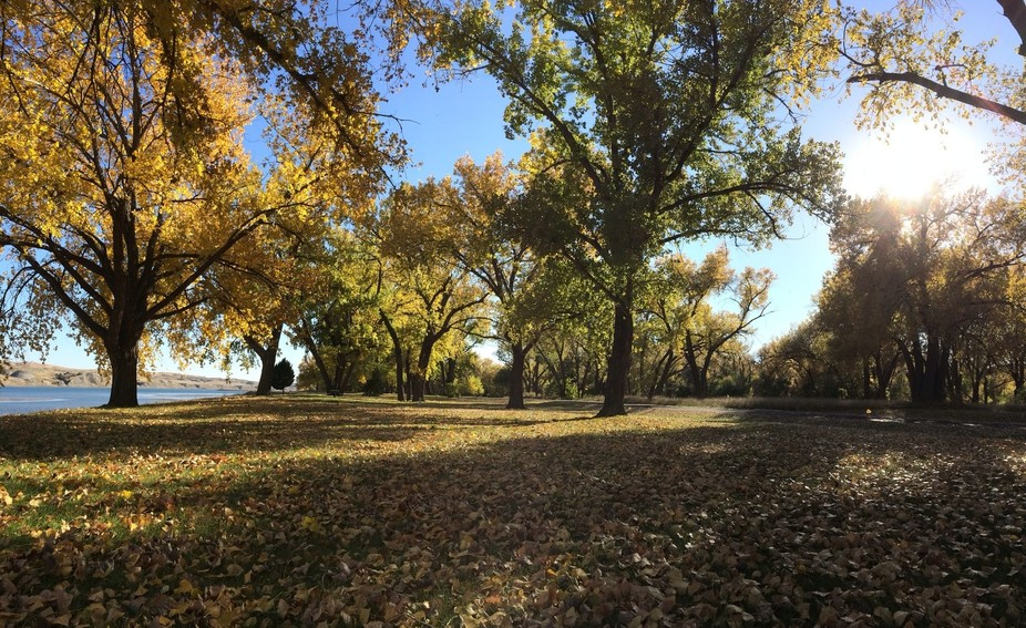 The 3rd hole on our local disc golf course.  I <3 fall! Pierre, SD, USA