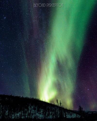 Andromeda Rides the Aurora