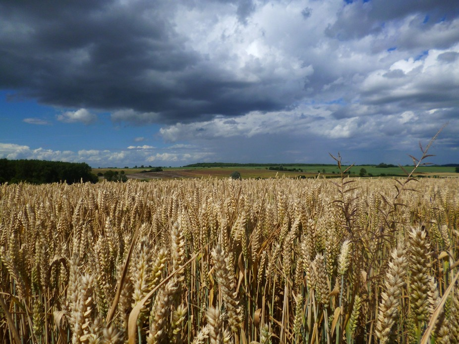 Weather over a Northamptonshire field,August 2013,UK