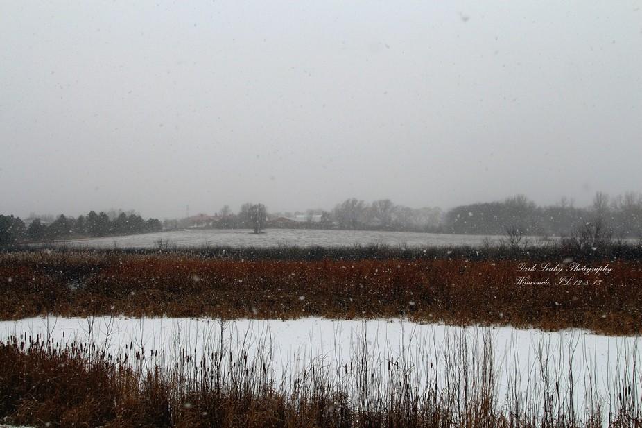 Beautiful Snow Storm 12-8-13 from Wauconda, Il.