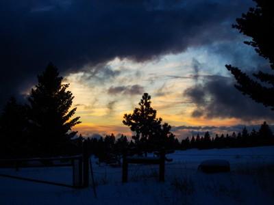 Snowy Meadow at Dusk