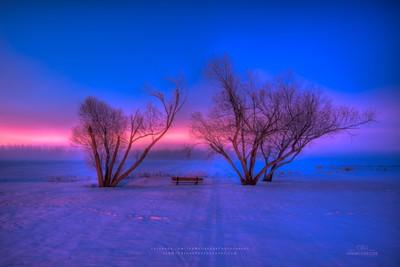 Twilight Beauty 1801_2013