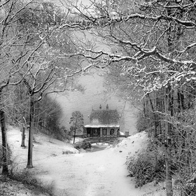 snow home black and white
