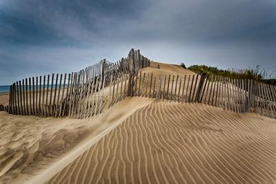 Sand Ripples-3