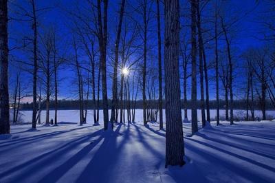 Winter At Lake Hennepin