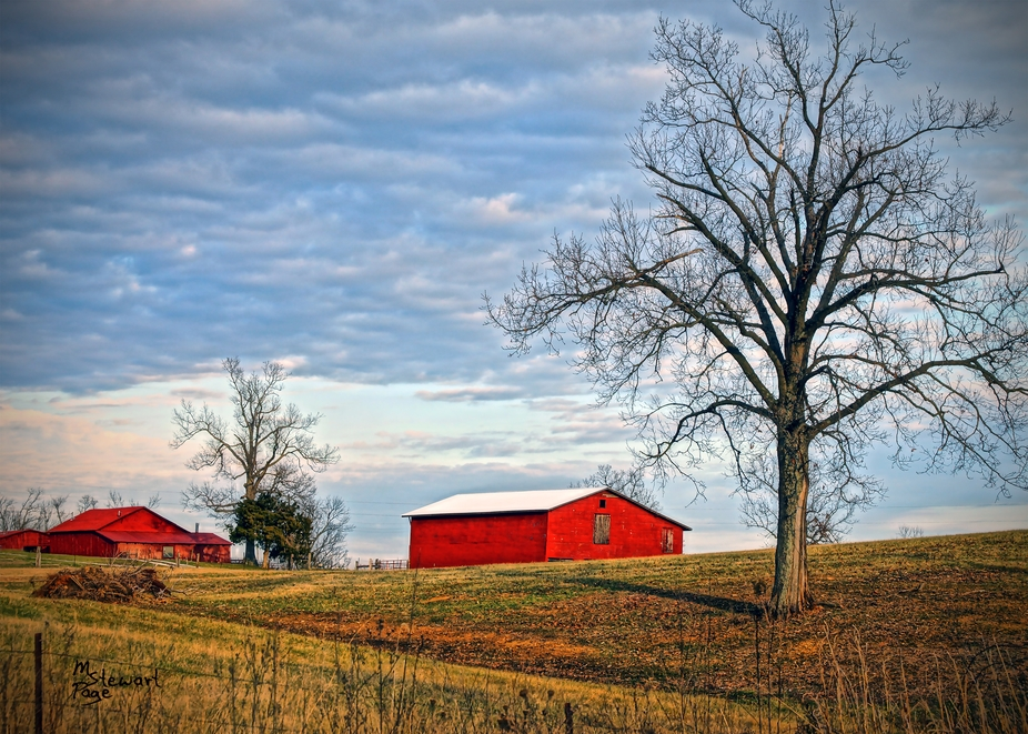 I took this from the side of the road on my way home one afternoon this January 2012. Just came o...