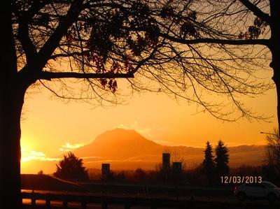 Mt. Rainier from work