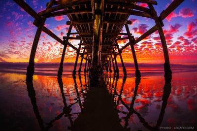 Paradise Reflected