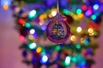 The tree in the crystal ball