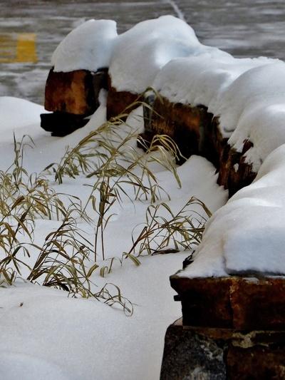 First Christmas snowfall