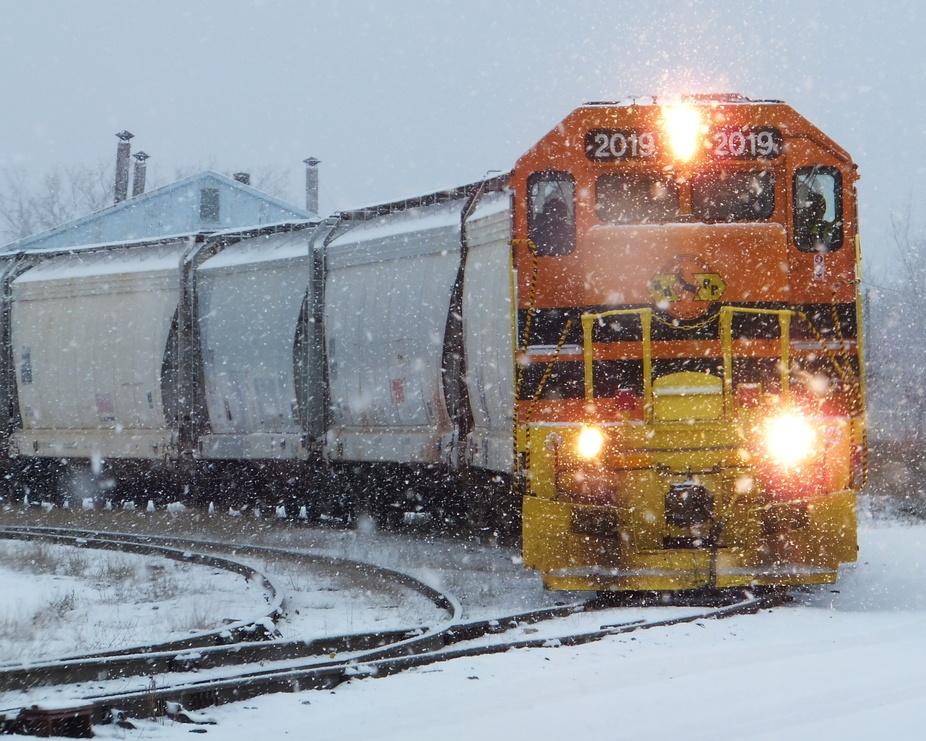 Taken in Muskegon, Michigan, USA  Nikon D7000 Nikkor 18-200mm lense Edited in Picasa