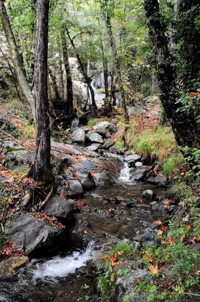 Water Stream of Kalidonia Waterfall