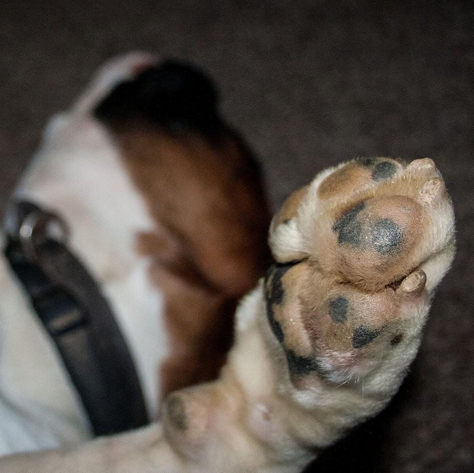 Let sleeping dog\'s lie.