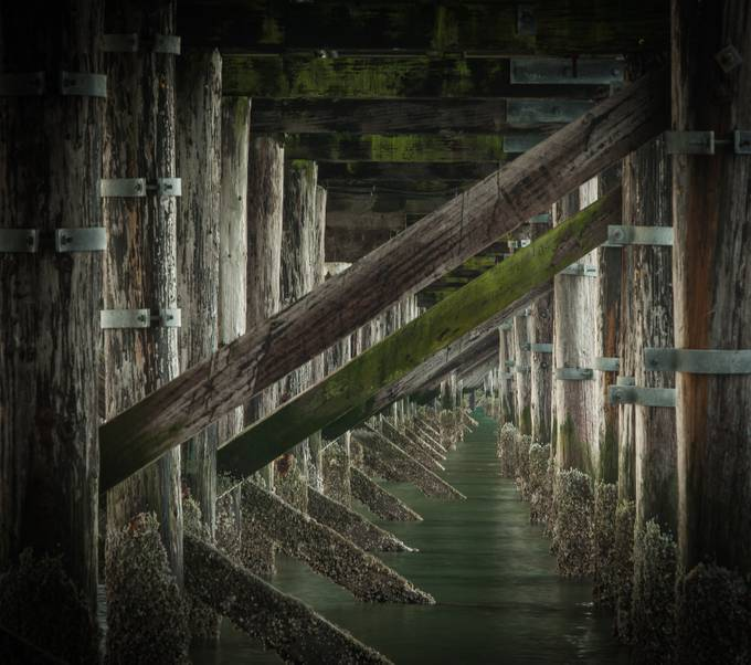 Pier Underbelly by gldosa - The View Under The Pier Photo Contest