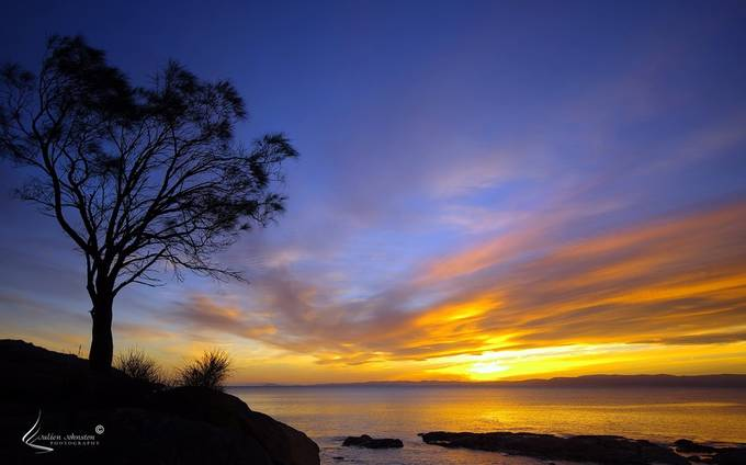 Sunset from Coles Bay, Tasmania by julienjohnston - Silhouettes Of Trees Photo Contest