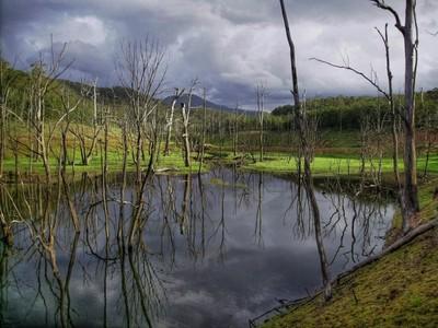 Lake Eldon