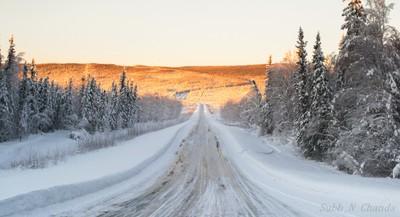 Typical Alaskan Highway