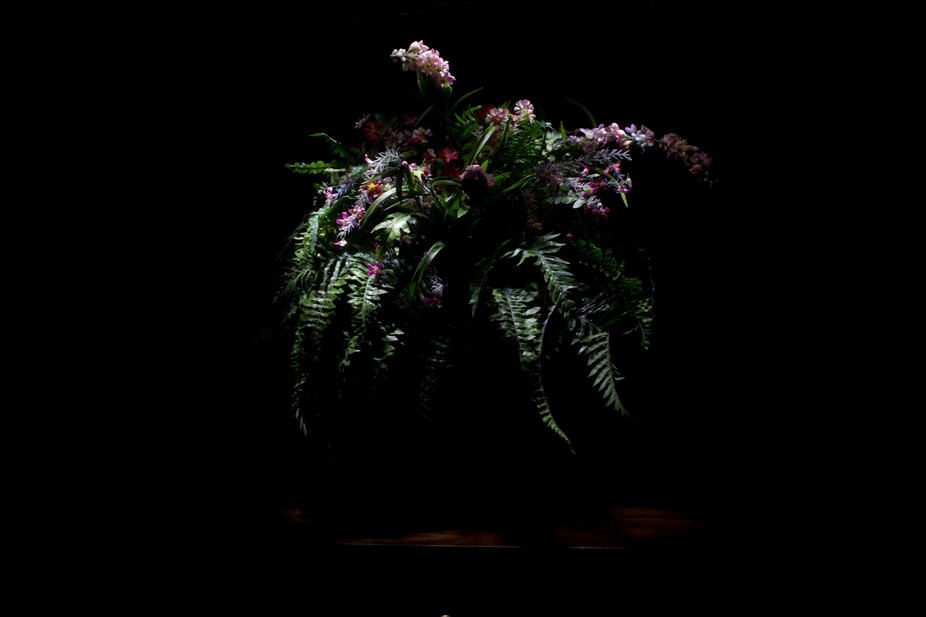 Used light painting to highlight the florals.