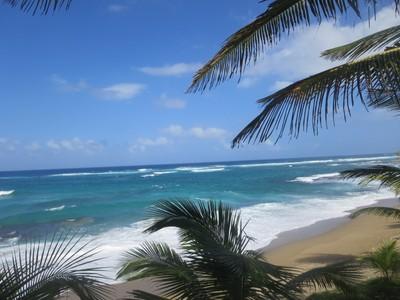 IMG_0822 Ocean View