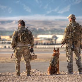 Dog will die to protect his man and man will die to protect his country .