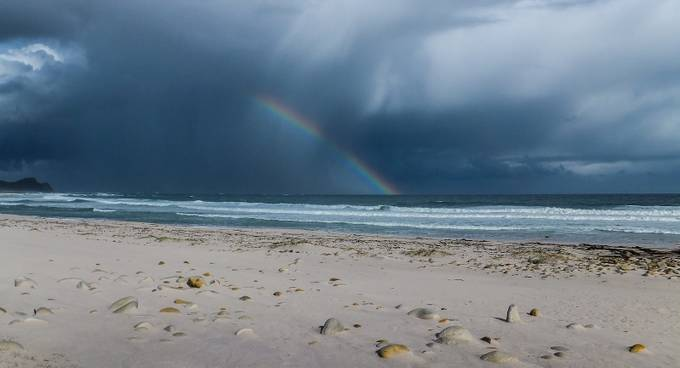 Fighting the storm by CathyWithers-Clarke - Rainbows Overhead Photo Contest