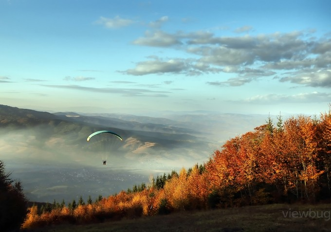 Flight over the forest by peterkitanov - People In Large Areas Photo Contest