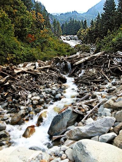The Falls of Mt. Rainier