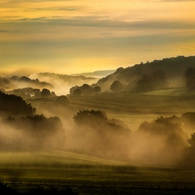 A landscape of the early Ardennes Mist.
