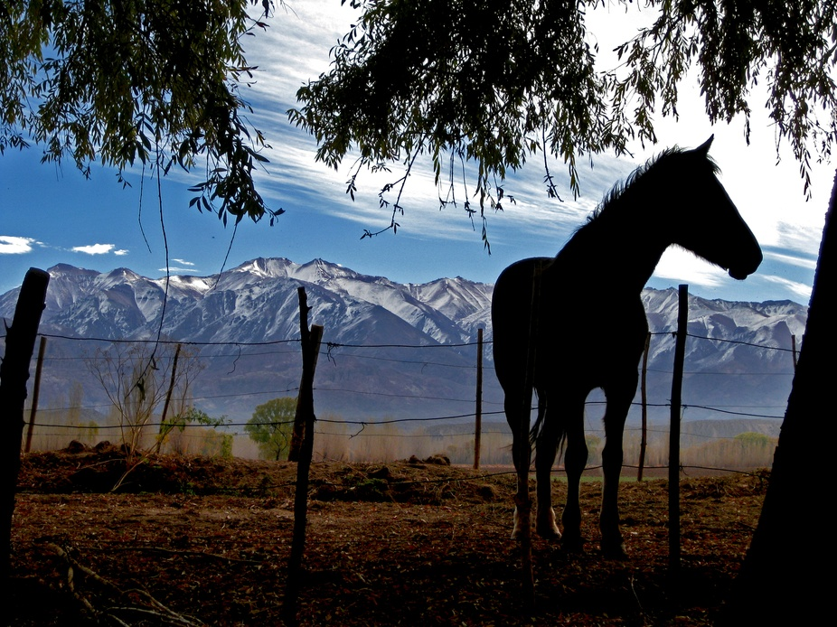 An image taken in the south of Argentina near sunset.