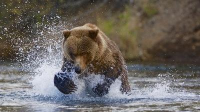 Making a splash!