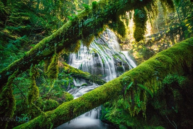 Panther Creek Falls by gappman - Diagonal Compositions Photo Contest
