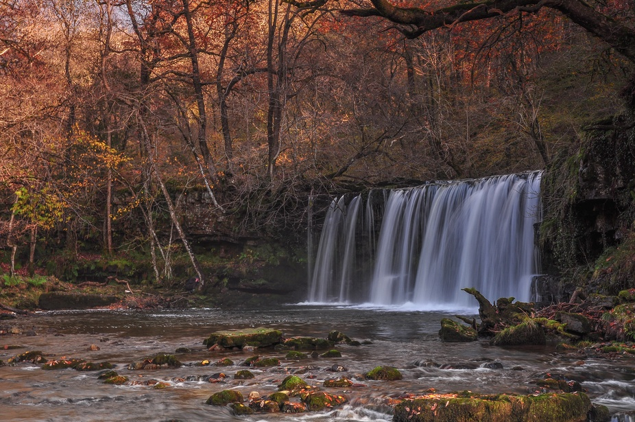 Autumn Falls 2