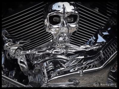 Got skullz?