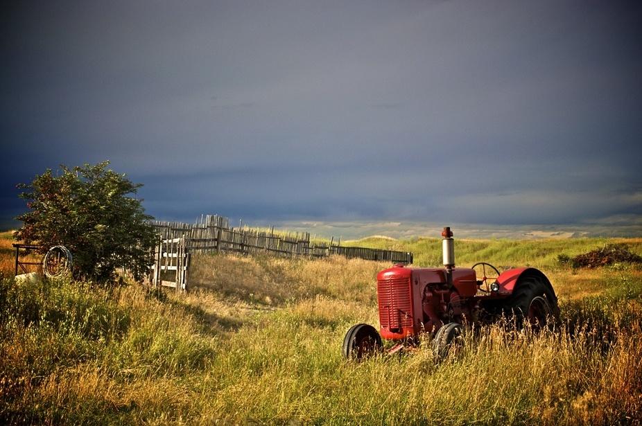 Calgary farm