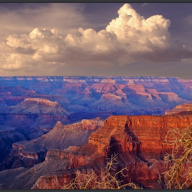 """""""View at Pima Point"""""""