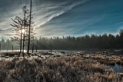 Sunrise Over Frozen Pond
